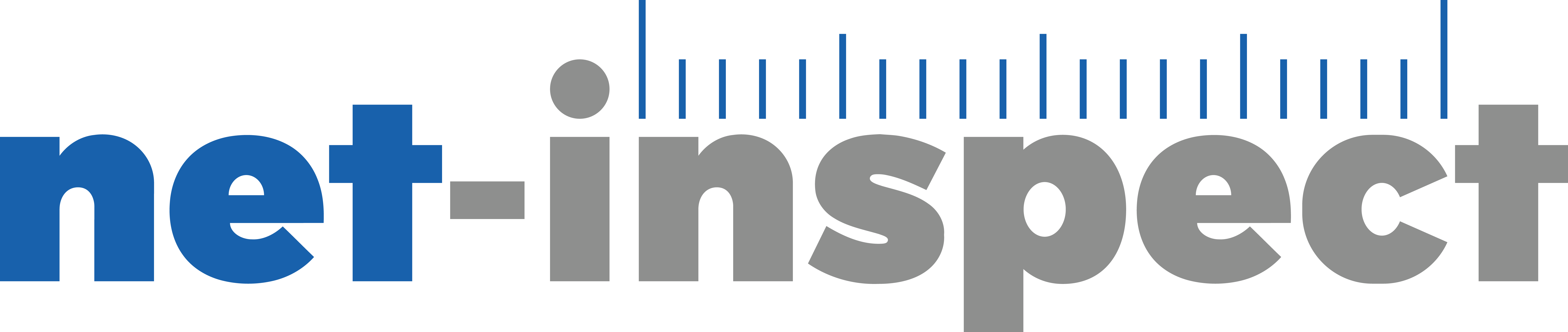 Net-inspect_logo_print_300ppi.png